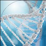 Ausschnitt einer DNA Sequenz